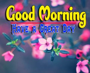 Good Morning For Whatsapp Pics Images