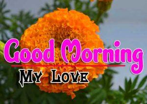Good Morning For Whatsapp Pics Photo