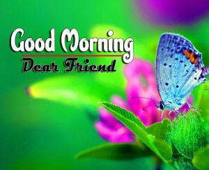 Good Morning For Whatsapp Pictures