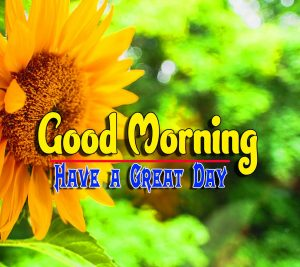 Good Morning For Whatsapp Pictures Photo