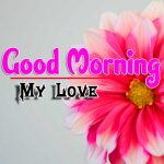 Good Morning Wallpaper For Whatsapp Download