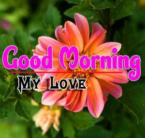 Good Morning For Whatsapp Wallpaper Hd
