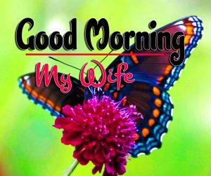 Good Morning For Whatsapp Wallpaper Photo