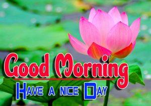 Good Morning For Whatsapp hd
