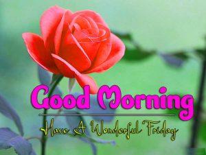 Good Morning Friday Download wallpaper