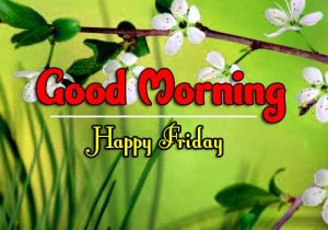 Good Morning Friday Images Pics
