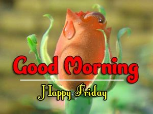 Good Morning Friday Pics For Facebook