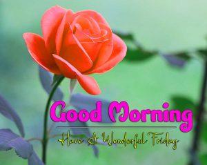 Good Morning Friday Pics Free Hd