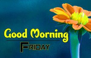 Good Morning Friday Pics Hd Free Photo