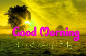 Good Morning Friday Pictures Free