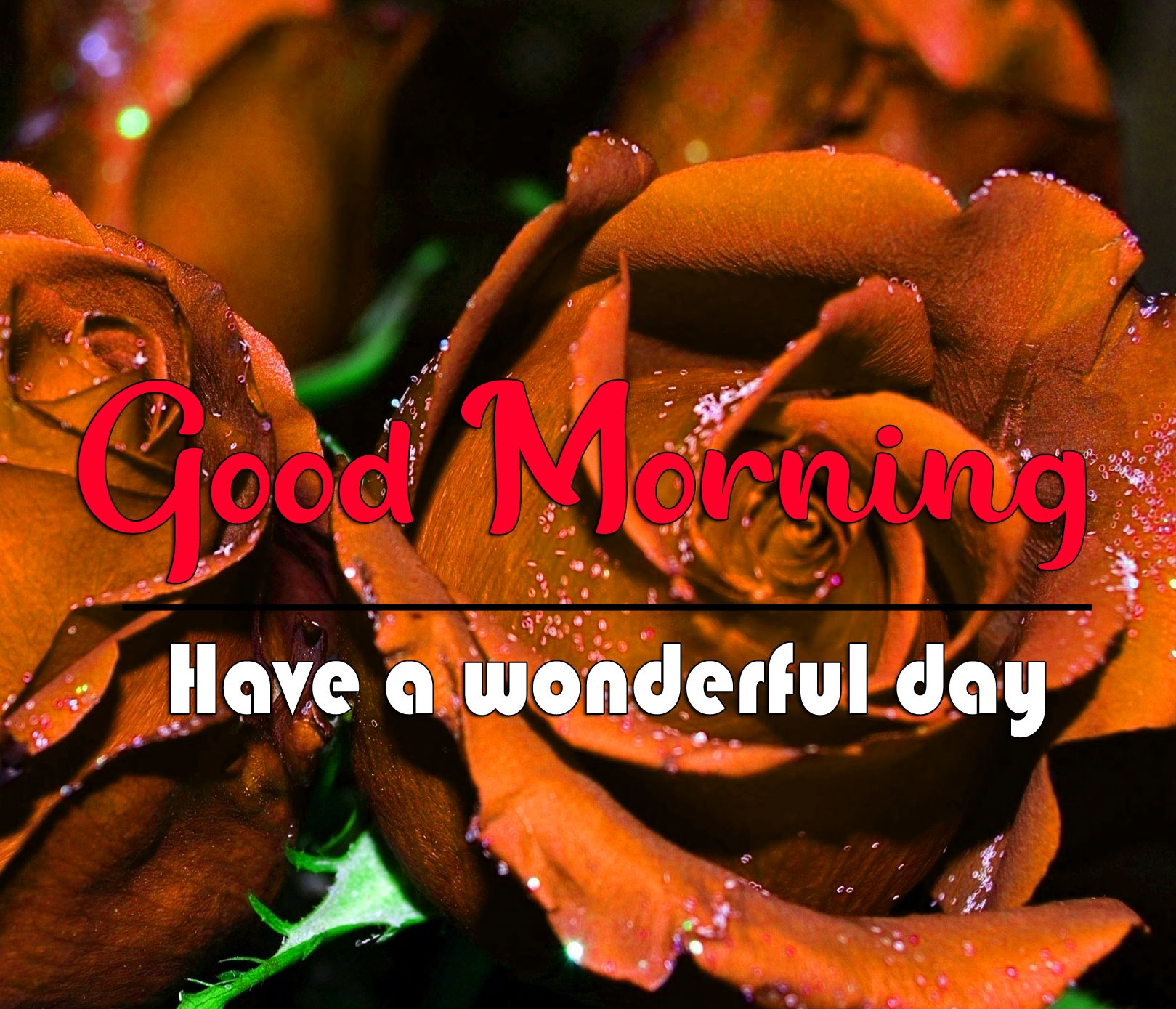 Good Morning Images Wallpaper With Red Rose
