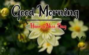 Good Morning Images pics photo wallpaper free hd
