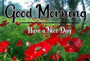 Good Morning Images wallpaper pics free hd