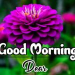 Good Morning Photo Pics