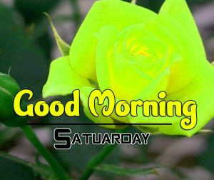 Good Morning Saturday Pictures Hd