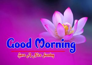 Good Morning Sunday Download Free