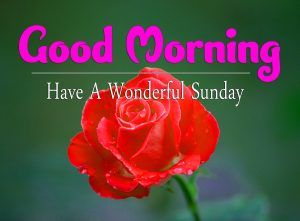 Good Morning Sunday Images Hd