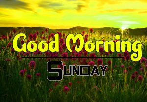Good Morning Sunday Photo Images Hd