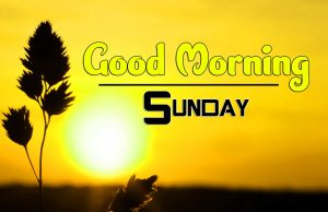 Good Morning Sunday Pics Photo