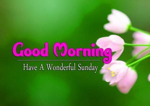 Good Morning Sunday Pictures Free