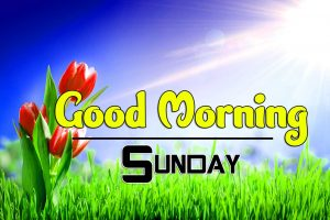 Good Morning Sunday Wallpaper Free