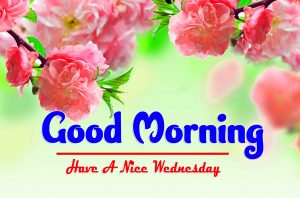 Good Morning Wednesday Download