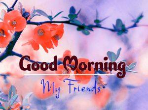 Good Morning Wednesday Free Photo