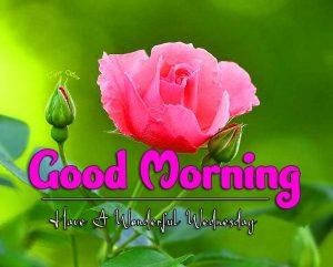 Good Morning Wednesday Images Photo