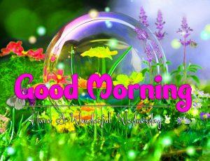 Good Morning Wednesday Photo HD Free
