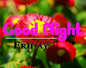 Good Night Friday Download Hd