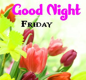 Good Night Friday HD Download IMages