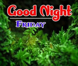 Good Night Friday Images Free Photo