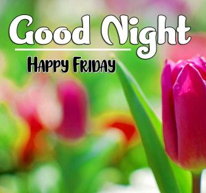 Good Night Friday Pics