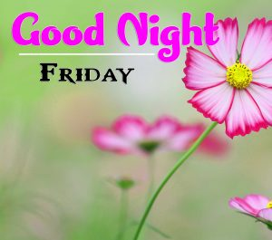 Good Night Friday Pics Wallpaper