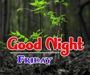 Good Night Friday Walpaper Hd