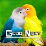 Good Night HD Images Wallpaper Download