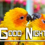 Good Night HD Images Photo For Whatsapp / Facebook