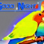 Good Night HD Images Wallpaper Download 2021