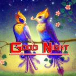 Latest New Good Night HD Images Pics Download