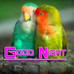 Free New Good Night HD Images Pics Download