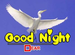 Good Night Images For Friends Download Free