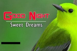 Good Night Images For Friends Download Hd
