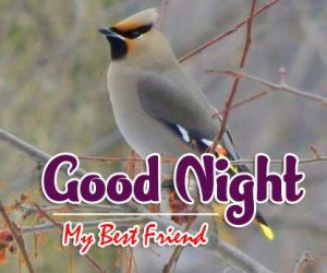 Good Night Images For Friends Download Images