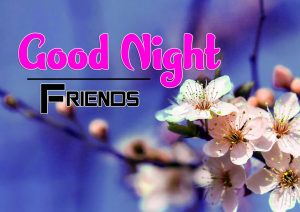 Good Night Images For Friends Download Photo