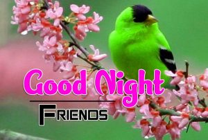 Good Night Images For Friends Images