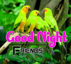 Good Night Images For Friends Images Pics