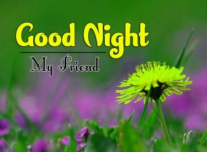 Good Night Images For Friends Images Wallpaper