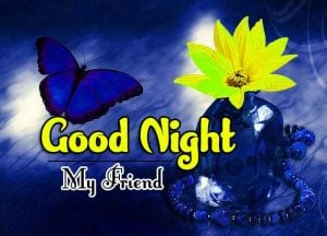 Good Night Images For Friends Photo Free