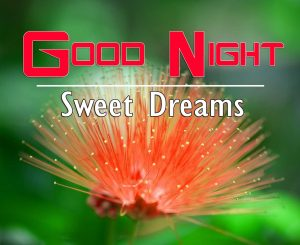 Good Night Images For Friends Photo Pics