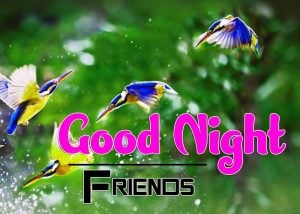 Good Night Images For Friends Photo Wallpaper